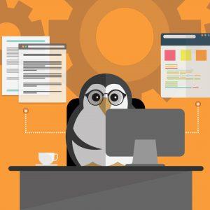 пингвин разработка
