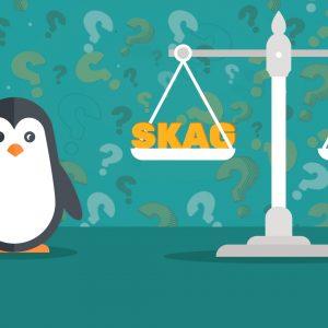 что такое SKAG и Альфа/Бета кампании